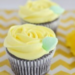 Buttercream Rose Cupcake Video Tutorial